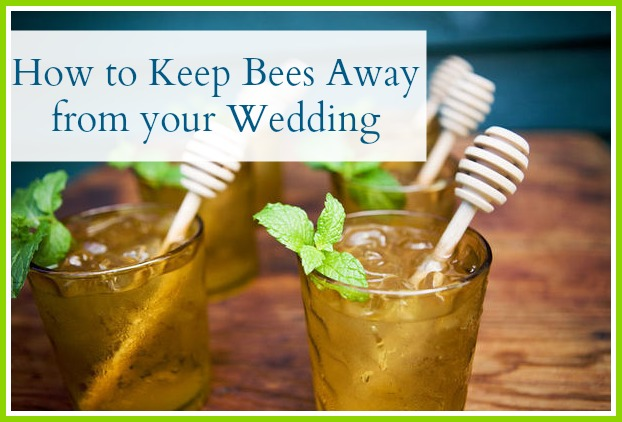 How To Keep Bees Away From Your Wedding