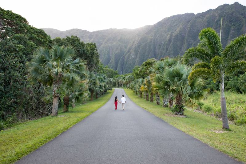 Wanderlust Hawaii Engagement Session Engagements