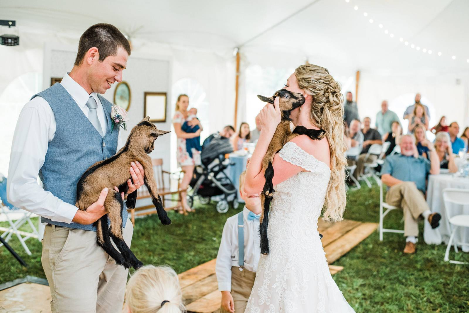 Couple surprised by baby goats at wedding reception
