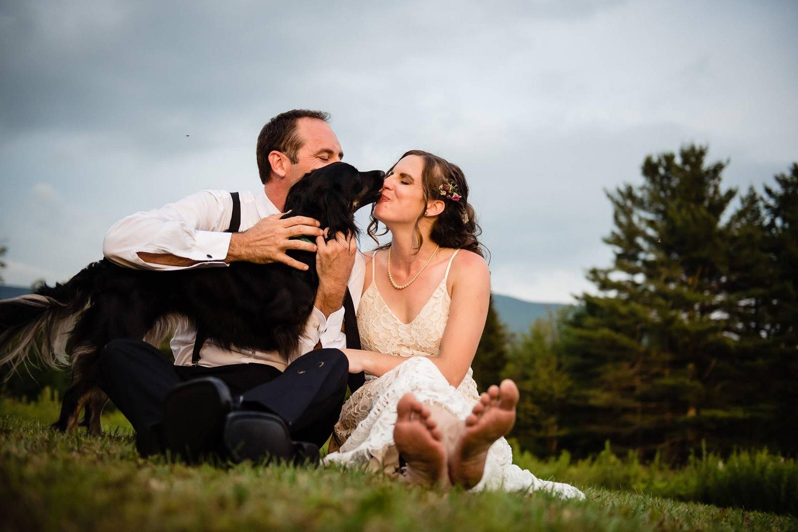 Dog licking bride's nose on wedding day