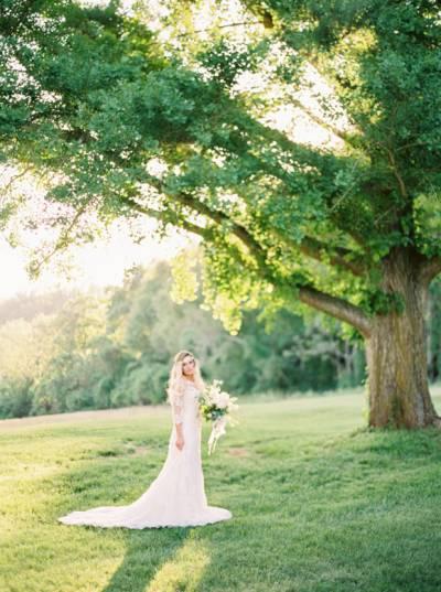 Lush And Elegant Wedding Ideas