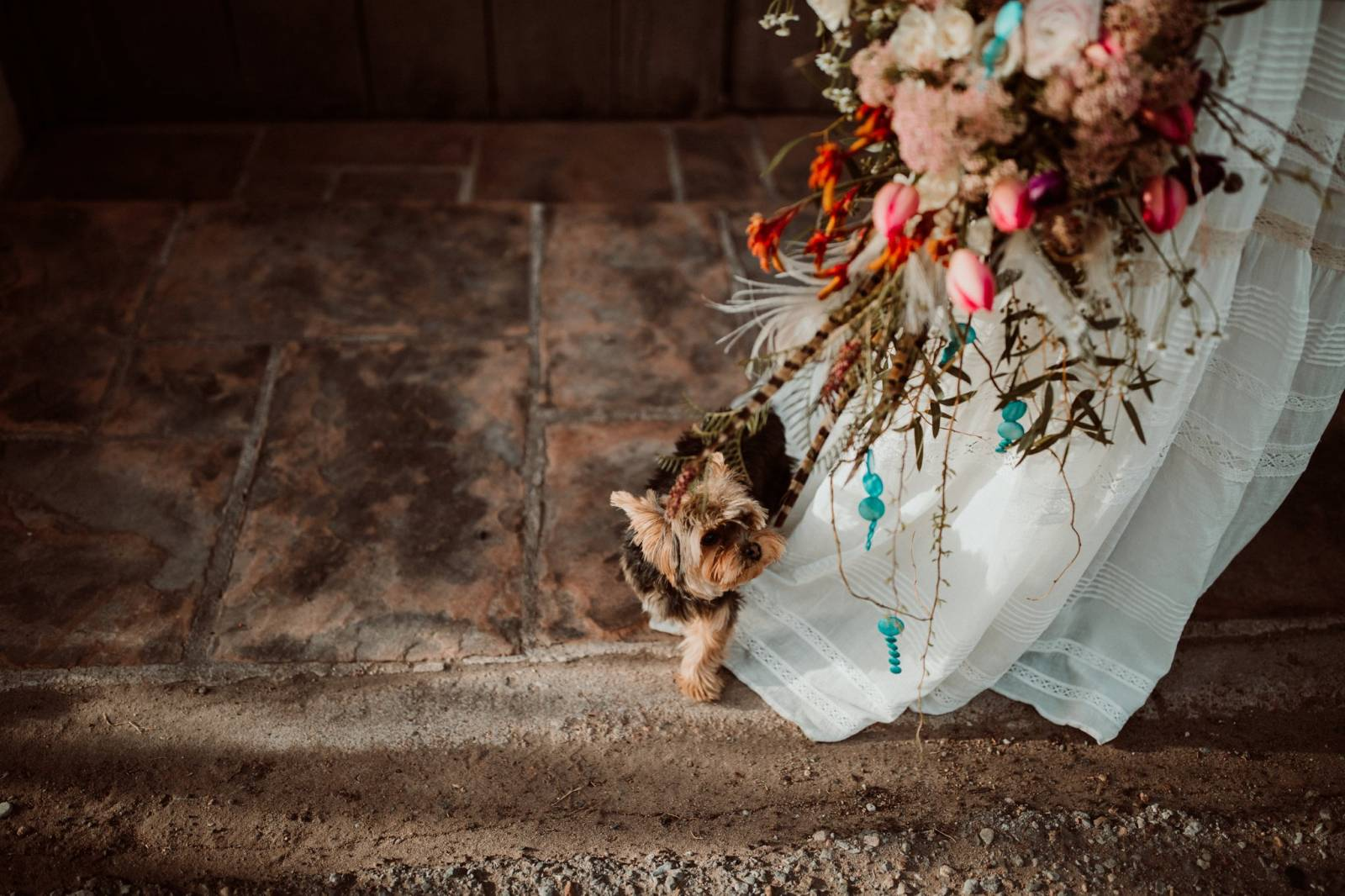 furry friend | southwestern styled wedding inspiration | Fall Sante Fe Wedding