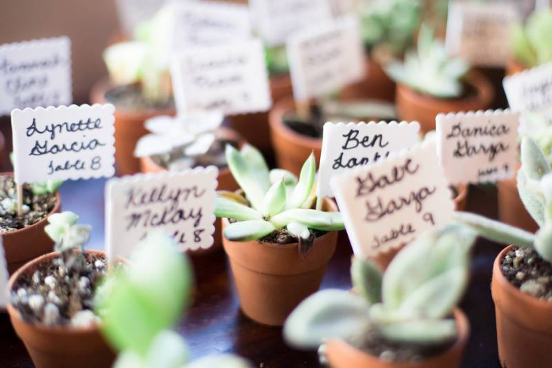 Succulent table assignments/favors