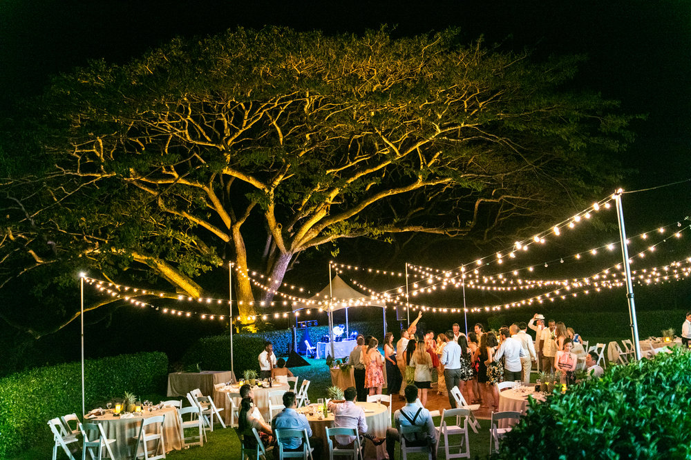 Spectecular Wedding At Kualoa Ranch Where Jurassic Park And Lost