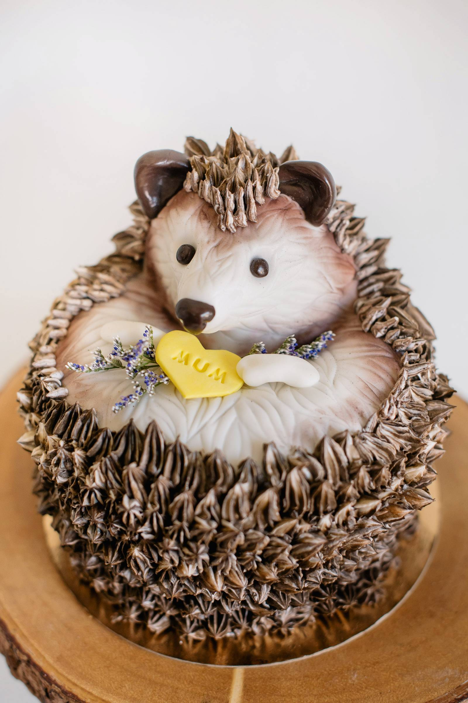 Outstanding Canmores Kake By Darci Hedgehog Cake Canmore Wedding Tips Funny Birthday Cards Online Inifodamsfinfo